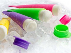 Popsicle Moulds (10)