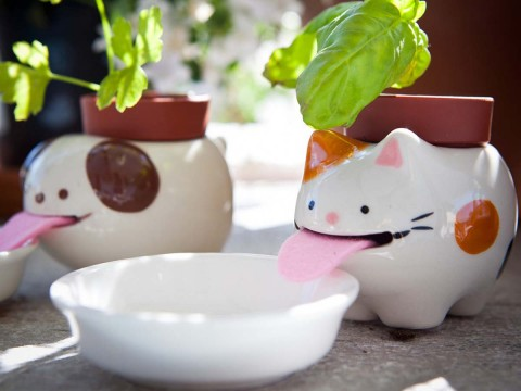 Peropon the Drinking Flower Pot