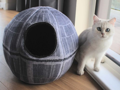 Star Wars Kattenmand